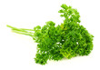 fresh bunch of parsley isolated on white