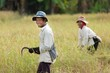 Rice workers