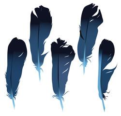 Feathers set