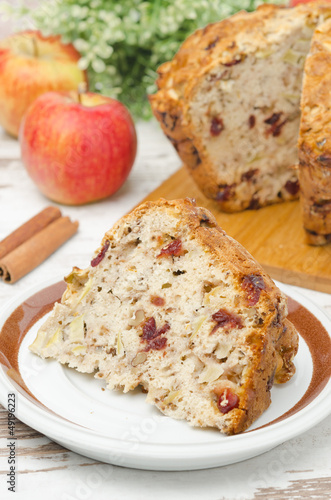 piece of homemade apple cake with cinnamon and dried cranberries