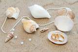Wedding rings and cockleshells on sand