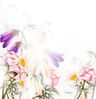 Beautiful pastel floral background with clean space and light