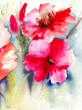 Quadro Colorful Red flowers