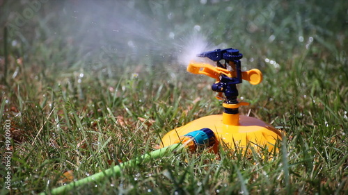 water sprinkler irrigating the grass