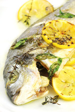 Oven baked gilt head sea bream with thyme, basil and lemon