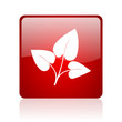 eco red square glossy web icon on white background