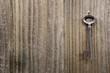 Grunge metal key