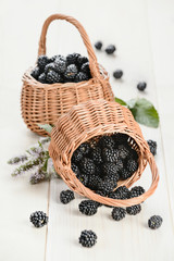Two baskets with ripe blackberry
