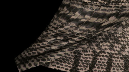 Snake Skin Leather Page Curl, wpe, Transition.
