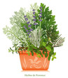 Herbe de Provence Rosemary Fennel Parsley Thyme Oregano Lavender