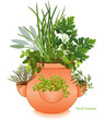 Herb Garden, Parsley, Sage, Rosemary, Thyme, Chives, Oregano