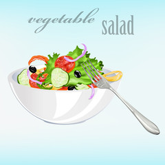 Fresh vegetarian vegetable salad.Vector