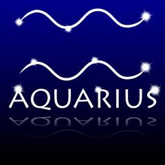 Signs of the zodiac. Aquarius