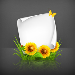 Sunflowers and paper