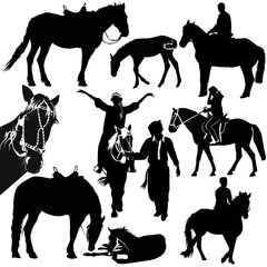 horses animals equestrian sport isolated