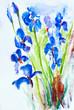 Quadro Aquarell: Wiesenblumen