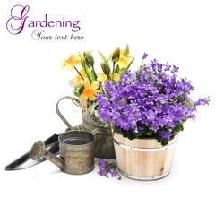 Spring flowers with garden tools isolated on white background