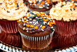 Chocolate Halloween Cupcakes with Festive Sprinkles