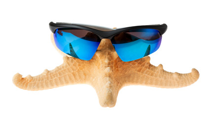 starfish in sunglasses on vacation. isolated