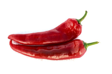 Two red peppers on white background