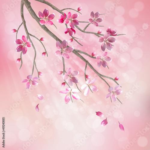 Fototapeta Spring vector tree branch cherry blossom flowers