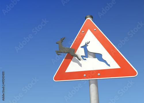 Unfallgefahr durch Wildwechsel