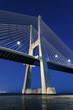 vertical view of Vasco da Gama bridge by night
