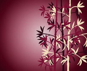 Bamboo burgundy