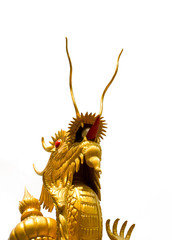 Chinese Dragon is thrusting the heaven
