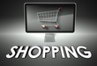 Computer and shopping cart with Shopping, E-commerce