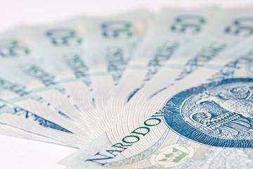 Polish money, coins, banknotes, close-up