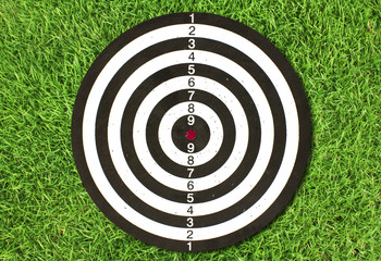 Dartboard on green grass (Darts Hit Target)