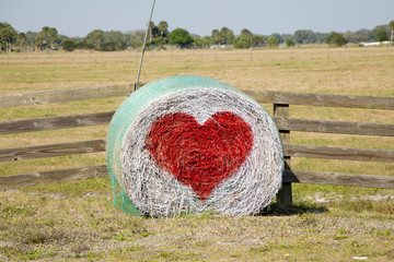 Country Hay Bale Valentine