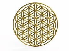 Symbole sacré Fleur de la vie en 3D