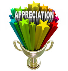 Appreciation Award - Recognizing Outstanding Effort or Loyalty