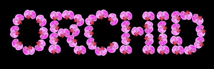 """the word """"orchid"""" of rosy beautiful orchids isolated on black ba"""