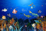 Fototapeta  - rafa koralowa © klatki