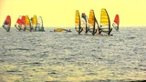 Sailboard Windsurfing Race Start