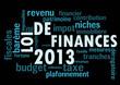 Loi de Finances 2013 bleu