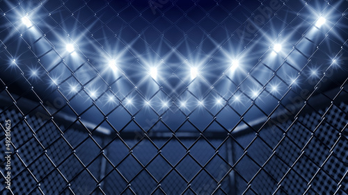 Aluminium Vechtsporten MMA cage and floodlights