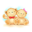 Cute Couple of Teddy Bear