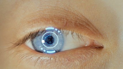 Eyeball with Biometric scan effect