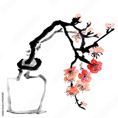 plum blossom - 49295087