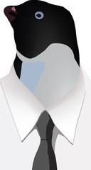 maschera da pinguino