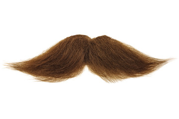Brown mustache isolated on white
