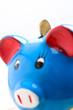 risparmio - piggy bank