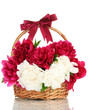 beautiful pink and white peonies in basket with bow isolated