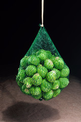 Brussel Sprouts in a net