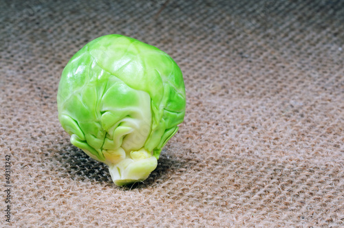 Brussels Sprout on hemp