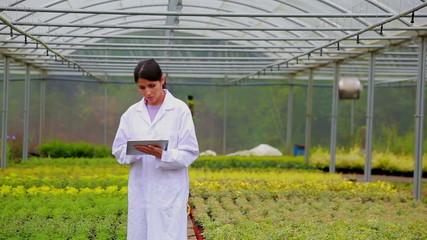 Woman walking through a greenhouse